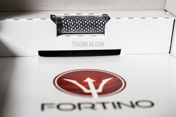 Fortino P and F 01.JPG