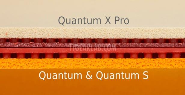 Quantum X Pro Fig05